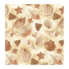 Seashells on Cream