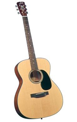 Blueridge BR-43 Solid Top 000 Guitar w/case