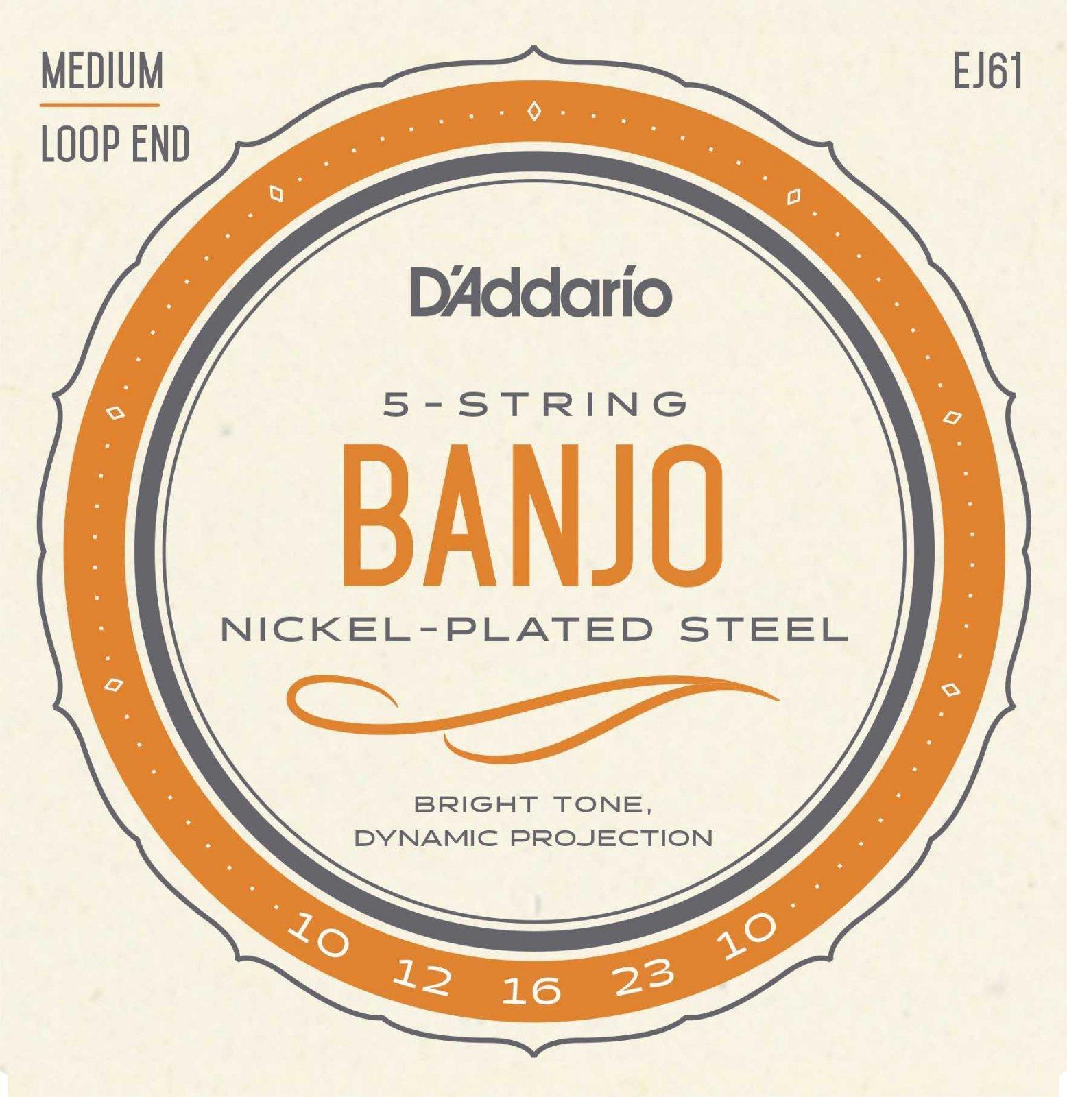 D'Addario EJ61 Banjo Set