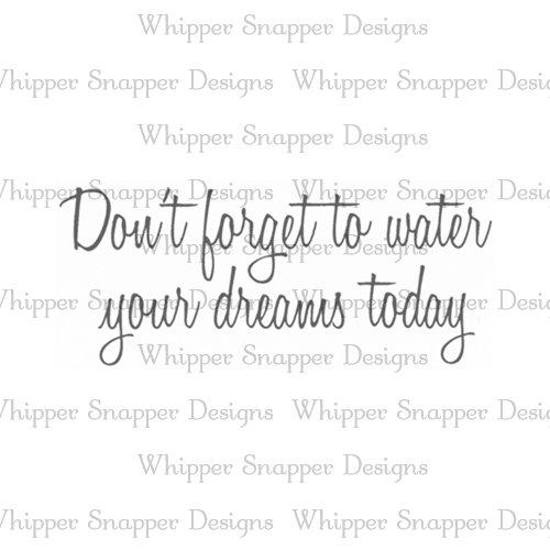 WATER YOUR DREAMS