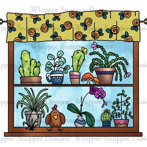 WINDOW OF CACTI