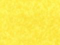 108 Quilt Backing Lemon Yellow