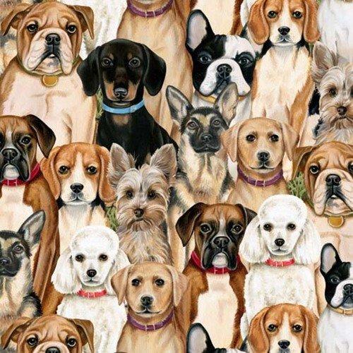 Blank Quilting Fabrics Faithful Friends Dog Collage Ecru
