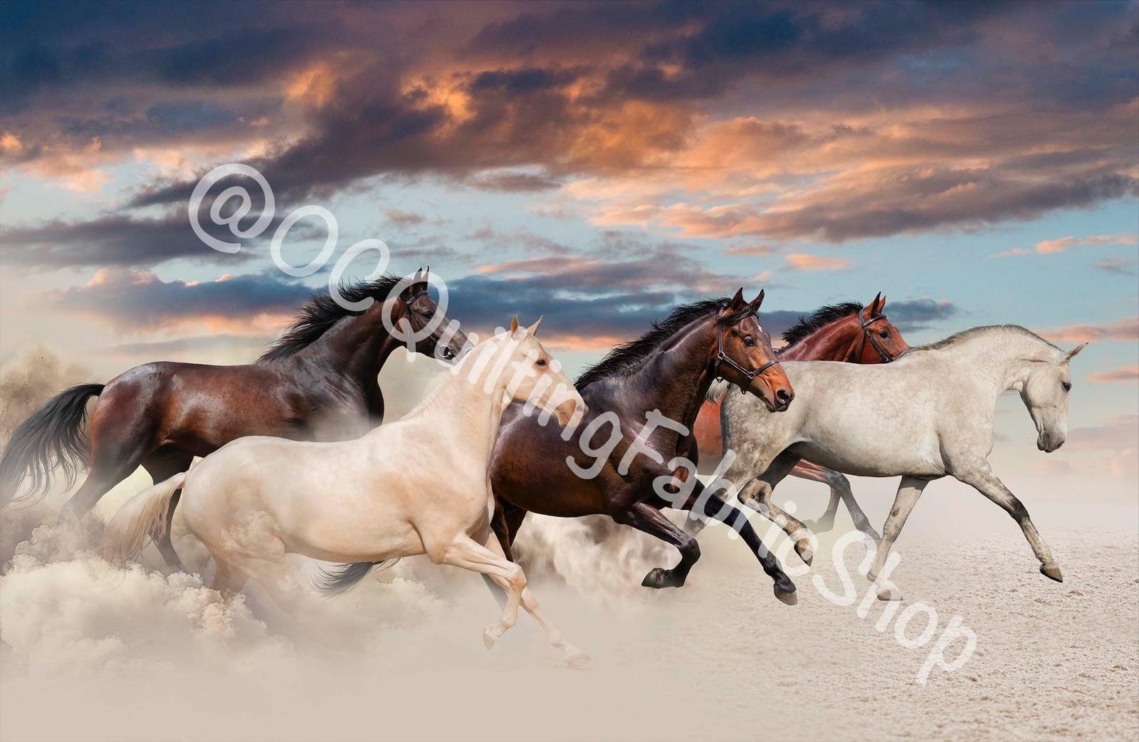 Northcott Maverick Galloping Mustang Beige 28 inches