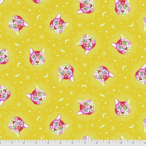 Curiouser & Curiouser  - Tula Pink - Chesire - PWTP164.WONDER