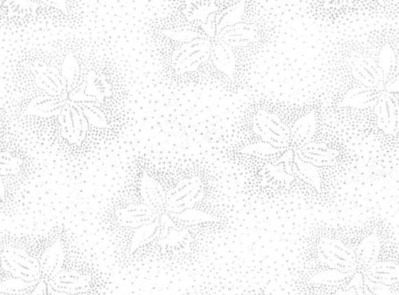 3082 - White on White