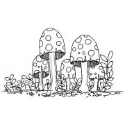 Fungus Amongus 1