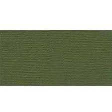 Bazzill Fourz Cardstock 12X12-Capers/Grasscloth