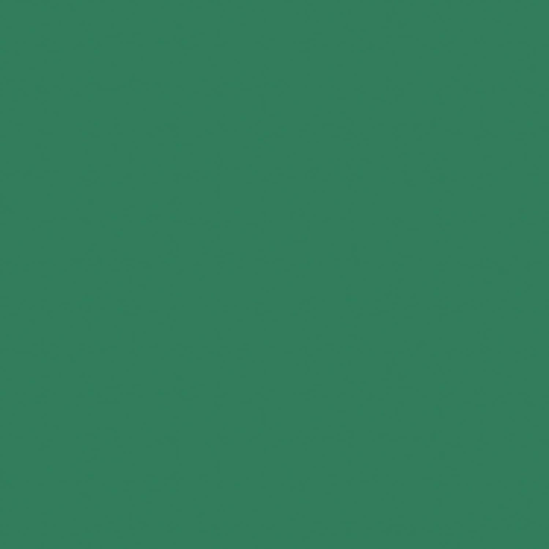 Bazzill Card Shoppe Heavyweight Cardstock 12X12-Evergreen
