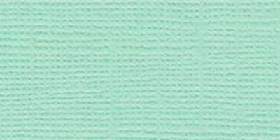 Bazzill Mono Cardstock 12X12-Parakeet/Canvas