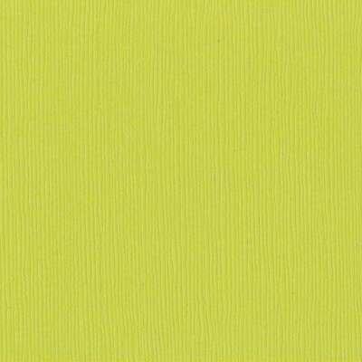 Bazzill Fourz Cardstock 12X12-Granny Smith/Grasscloth