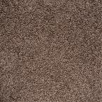 Calico Rock Oxford Twist Residential 18 in. x 18 in. Carpet Tile (10 Tiles/Case) by TrafficMaster