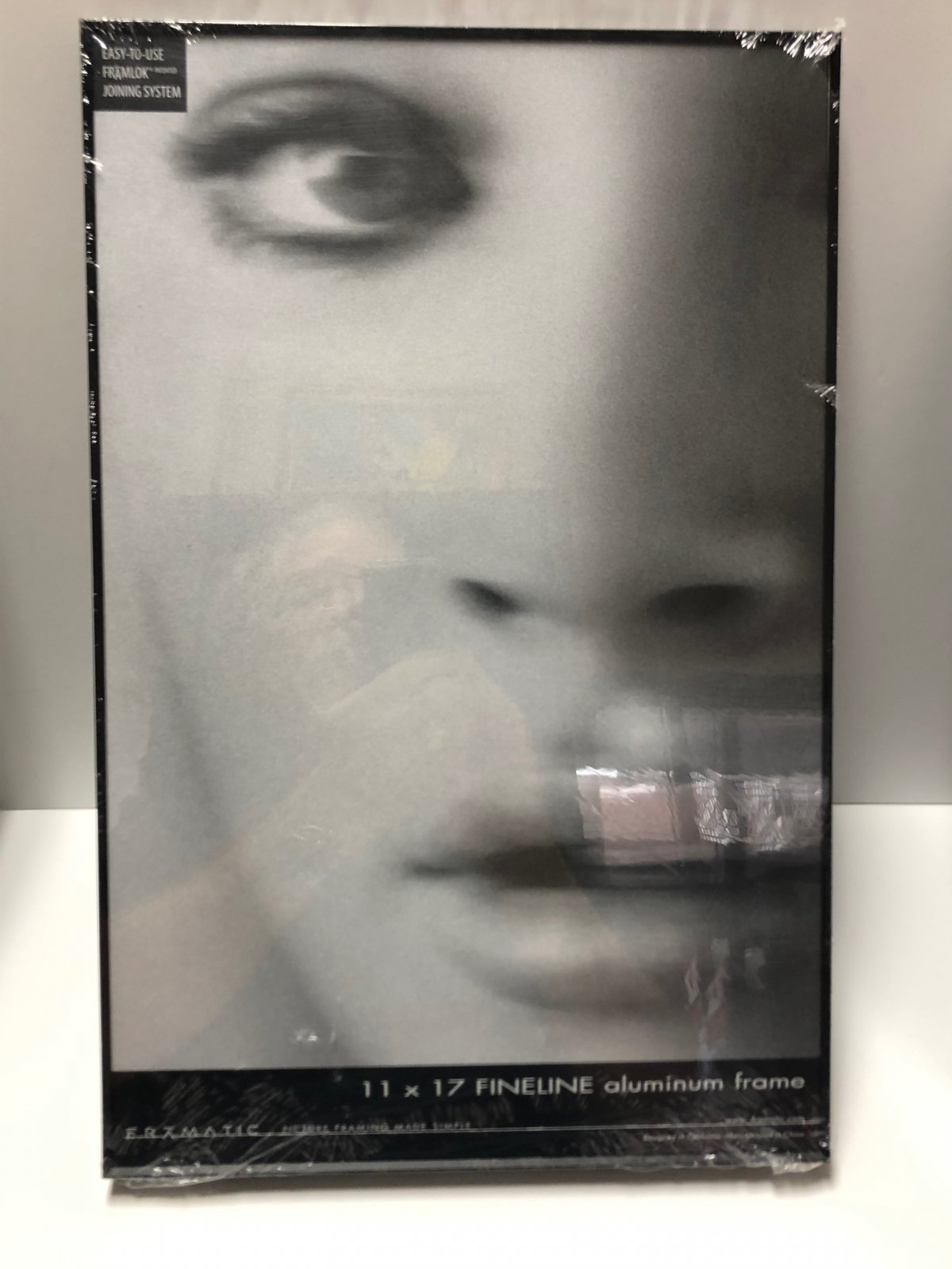 11 x 17 Framatic Fineline Metal Frame