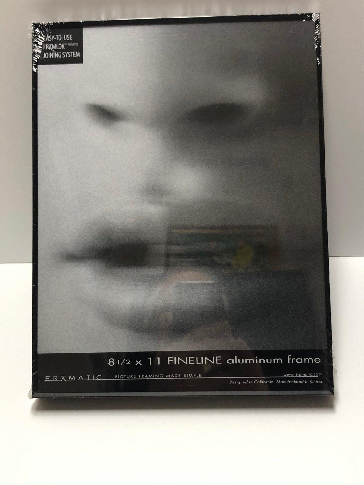 Framatic Fineline 8 1/2 x 11 Metal Readymade Frame