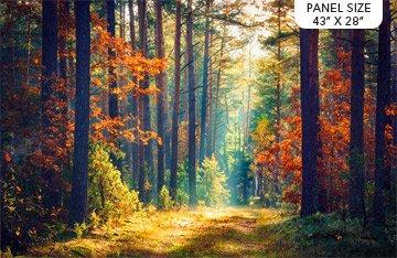 Autumn Stroll DP23404