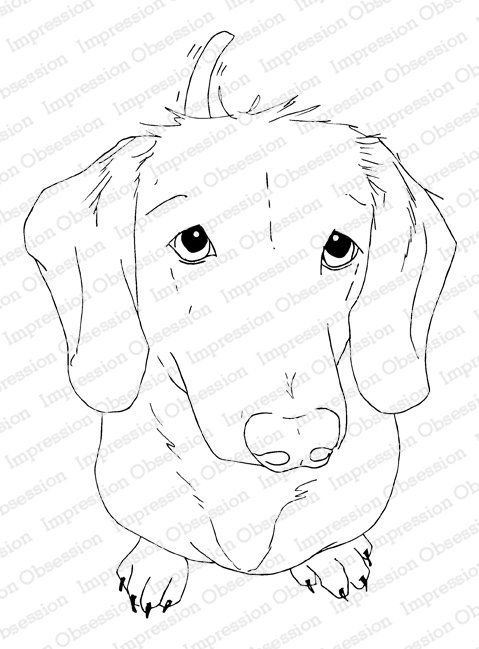 Impression Obsession Cling Stamp, Dachshund