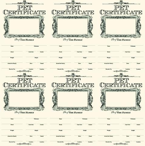 Pet Certificates On Ivory Paper
