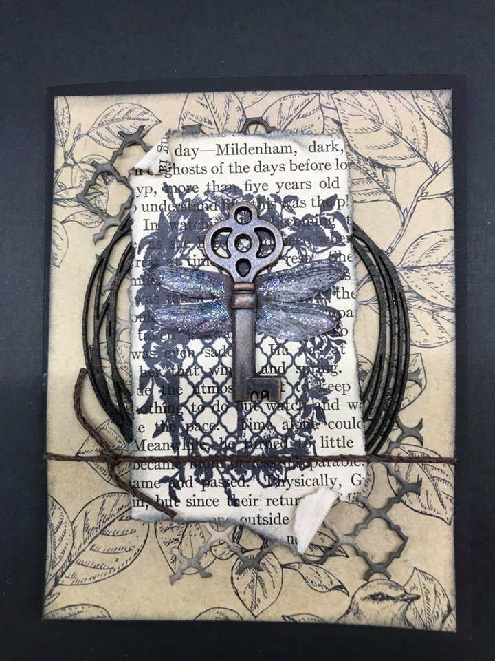 Dragonfly Card Kit