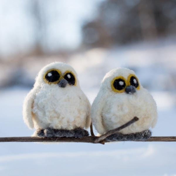 Going Gnome Needle Felting Snowy Owl Babies Kit