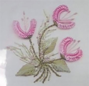 Brazilian Embroidery, Three Jasmines