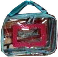 Bag, Chandail's Clear Bag