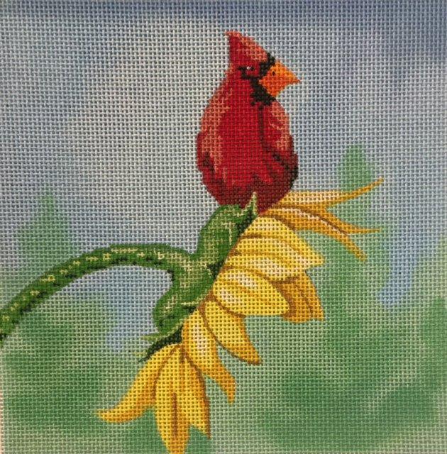 Sunflower on Cardinal