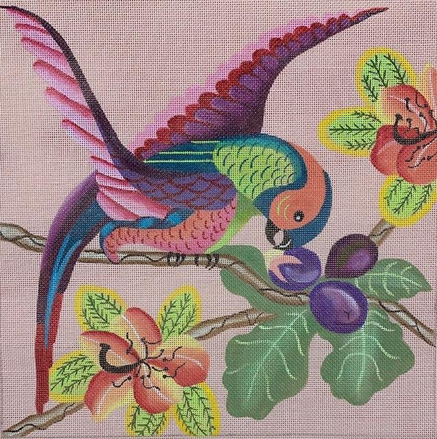 Parrot on Pink