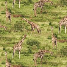 Born Free - Giraffe - Green