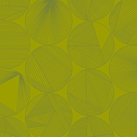 Quantum - Petri - Iguana