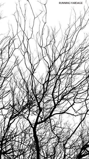 Silhouette - Border Trees - Black/White