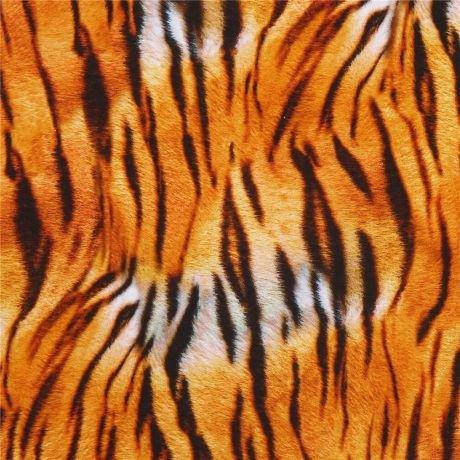 Animal Kingdom - Tiger Stripe