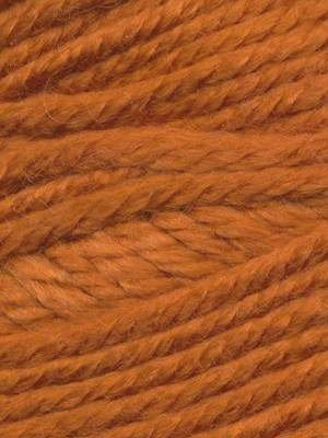 Ella Rae Cozy Soft Chunky Solid #211 Carrot Orange Bull