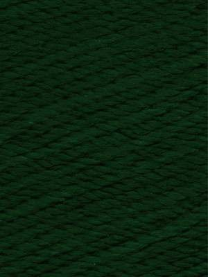 Ella Rae Cozy Soft Chunky Color #227 Hunter Green