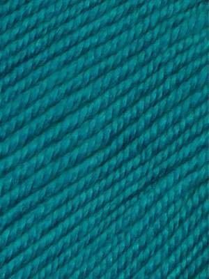 Ella Rae Cozy Soft Chunky Color #228 Aqua Pura