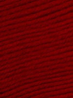 Ella Rae Cozy Soft Chunky Color #232 Brandywine