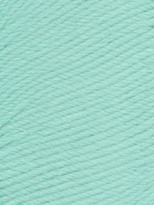 Ella Rae Cozy Soft Chunky Color #236 Frozen Mint