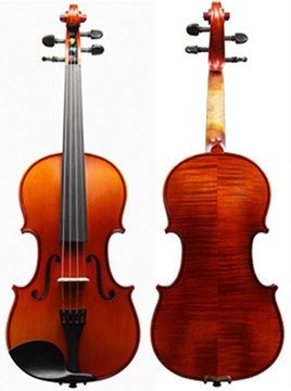 1200 Series Violin Outfit