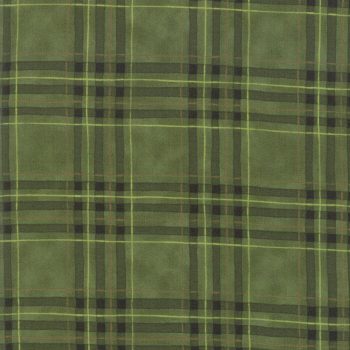Fabric Explore Plaid Green Flannel 19913-15B