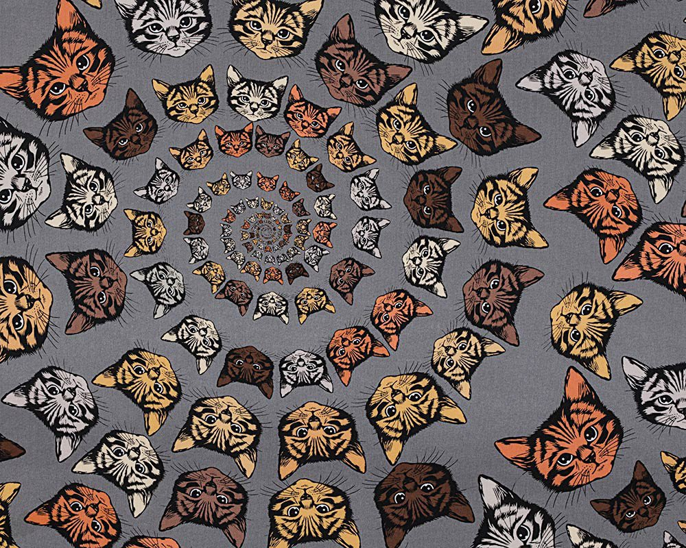 Cat-Finity - Cotton Print