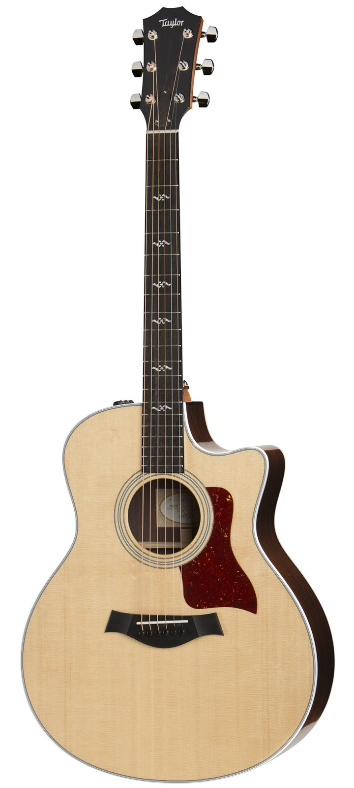 Taylor 416ce-R - Rosewood Back