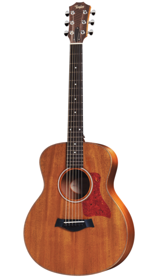 Taylor GS Mini Mahogony