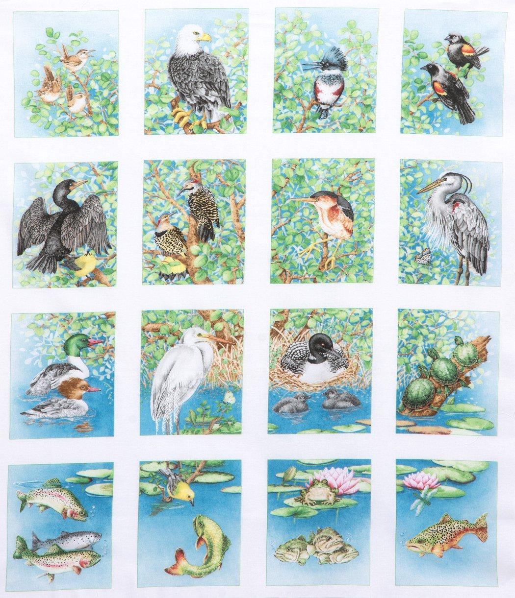 Freshwater Wildlife panel