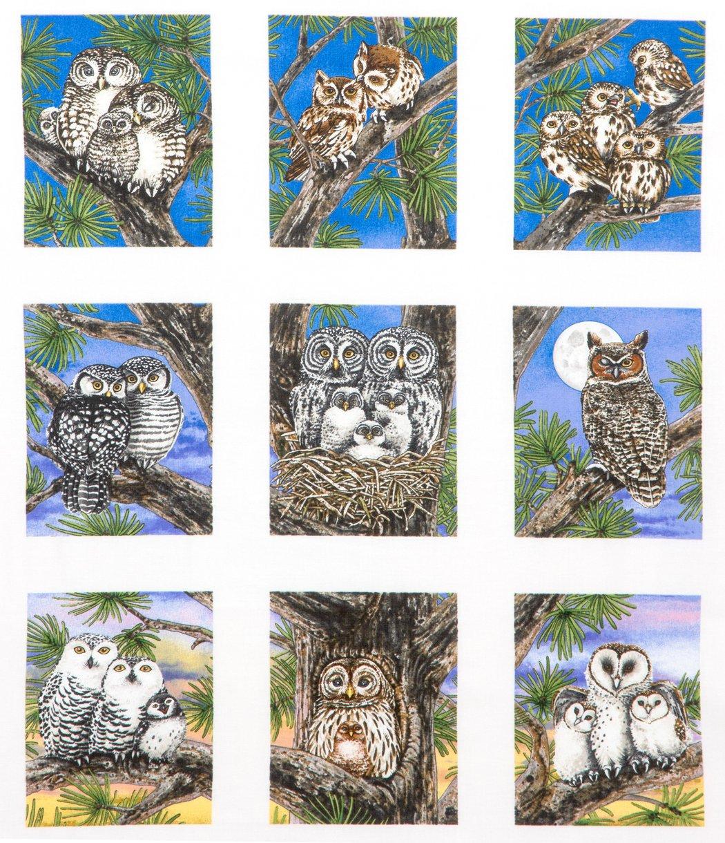 Owl Families panel