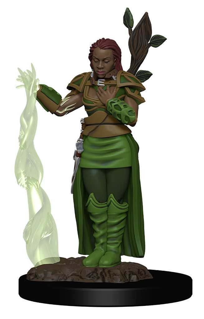 Dungeons & Dragons Icons of the Realms Premium Figures - Human Female Druid
