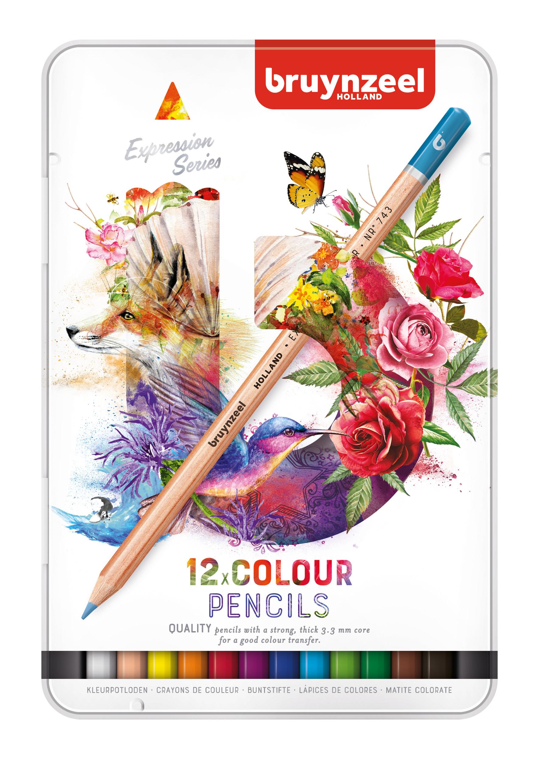 Bruynzeel Expression Colour Pencils Tin 12