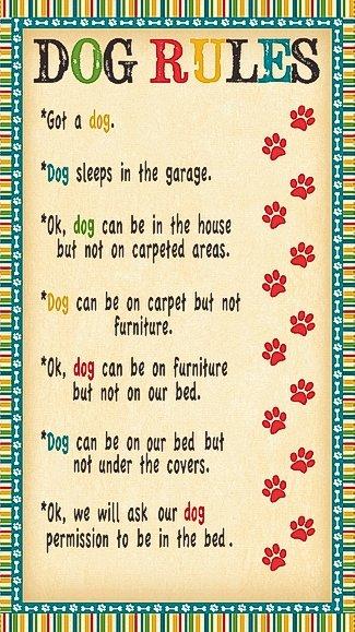 Dog Wisdom 14607 249 Panel