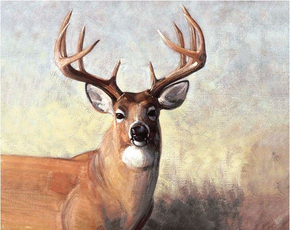 Majestic Outdoors Deer Panel PD5570