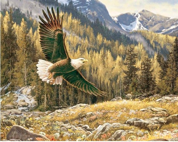 Majestic Outdoors Eagle Panel PD5570