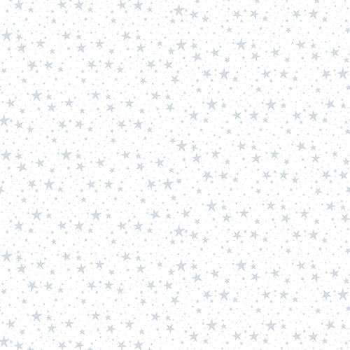 Quilters Flour II White on White Stars