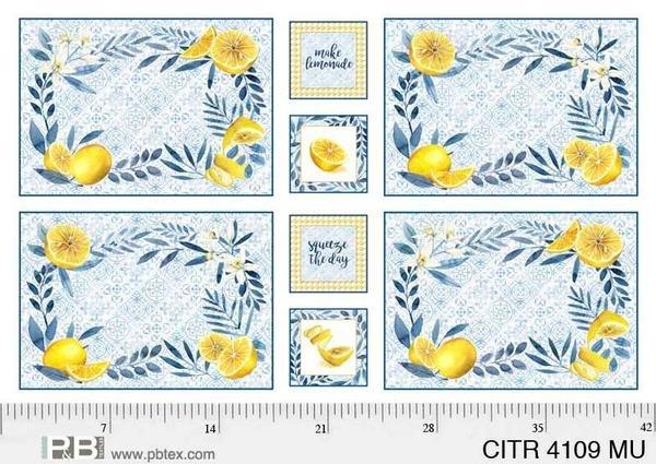 Citrus Sayings Placemats and Coaster Panel 44 x 3/4 yard (#04109-MU)